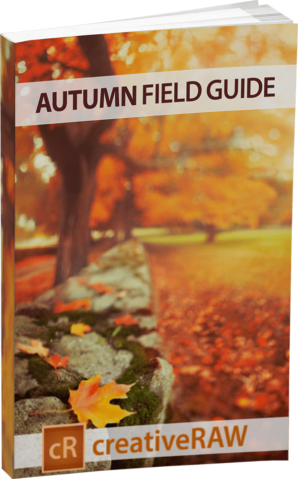 Free eBook on photographing fall foliage landscapes