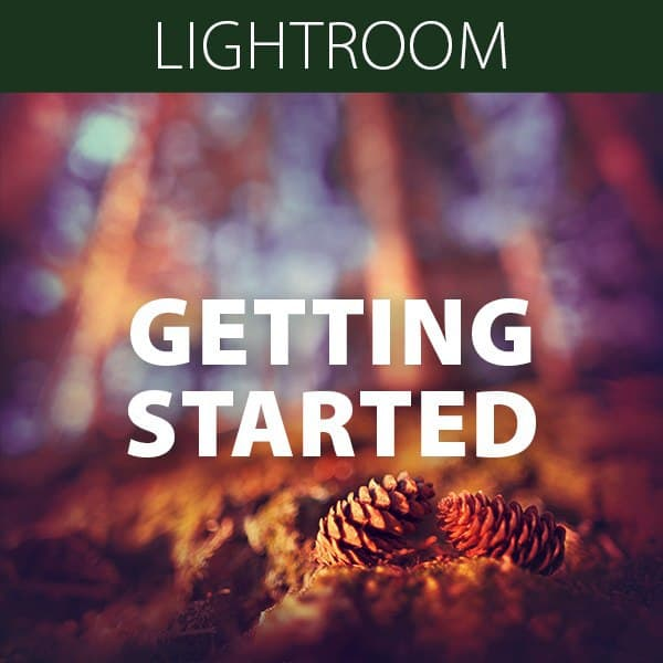 Getting Started in Lightroom