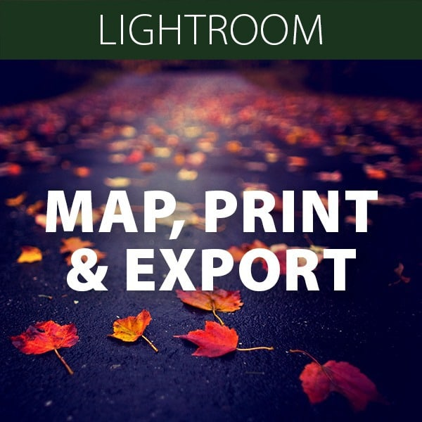 Map, Print and Export