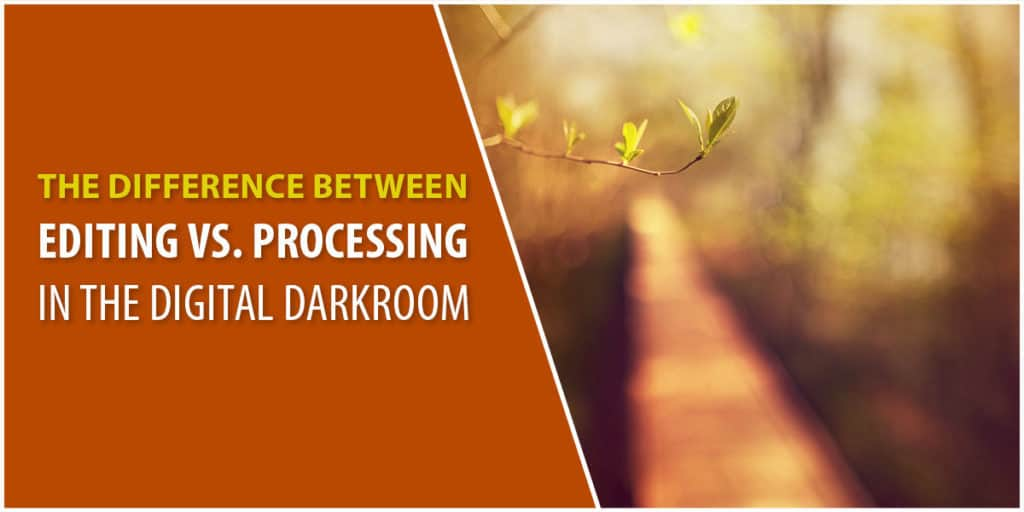 Editing vs. processing in Lightroom and Photoshop
