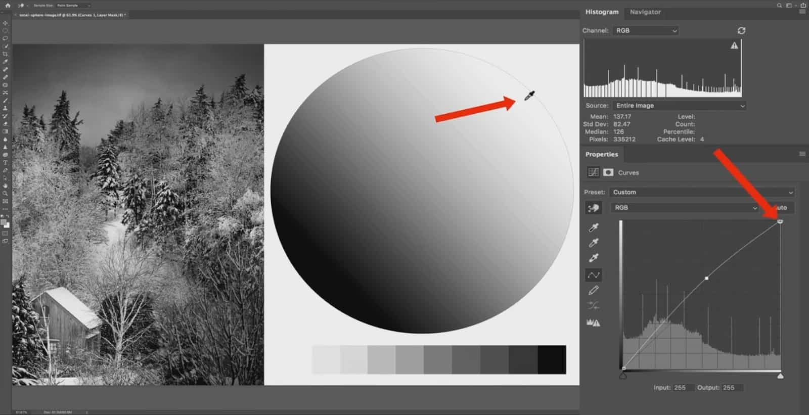 how does tones work in lightroom