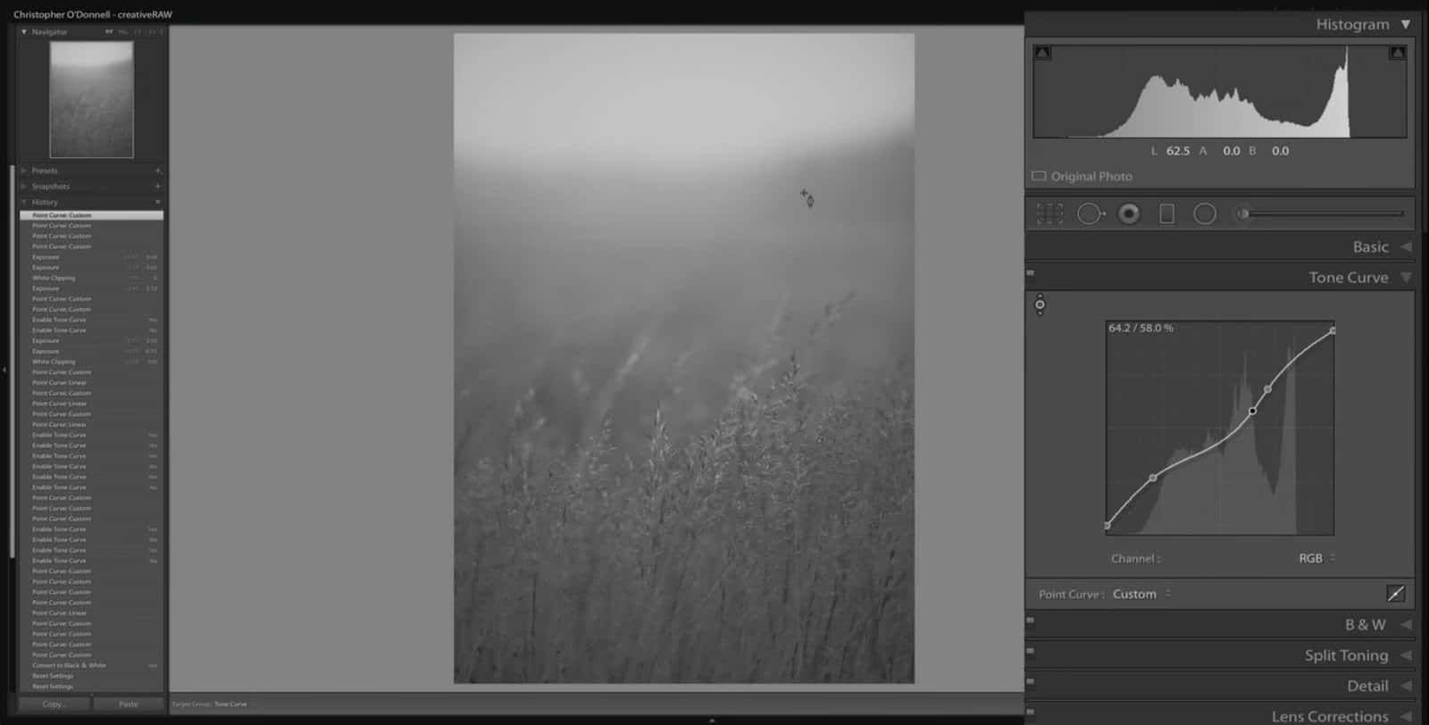 Adding Points to Tones Curve - Lightroom and Photoshop