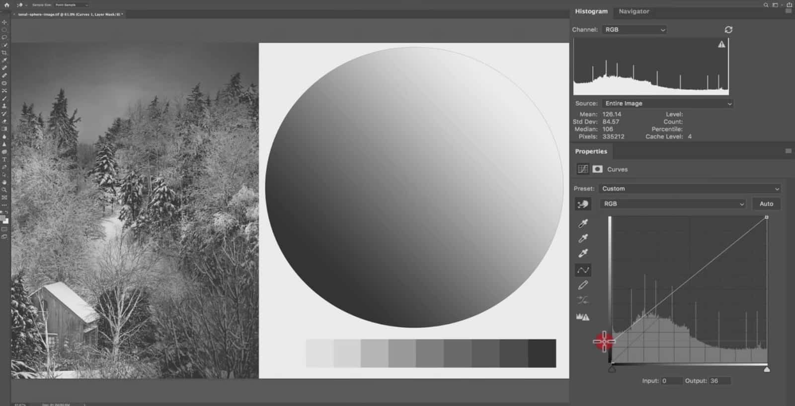 Adjusting the Tonal Environment