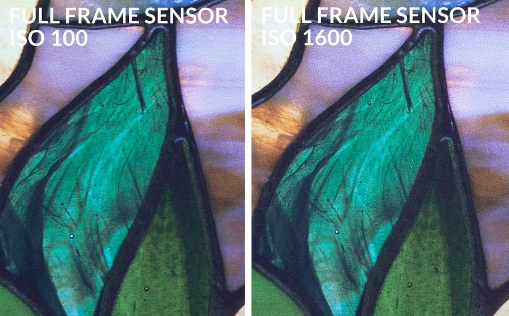 Full frame sensor iso 100 vs 1600 - CreativeRAW