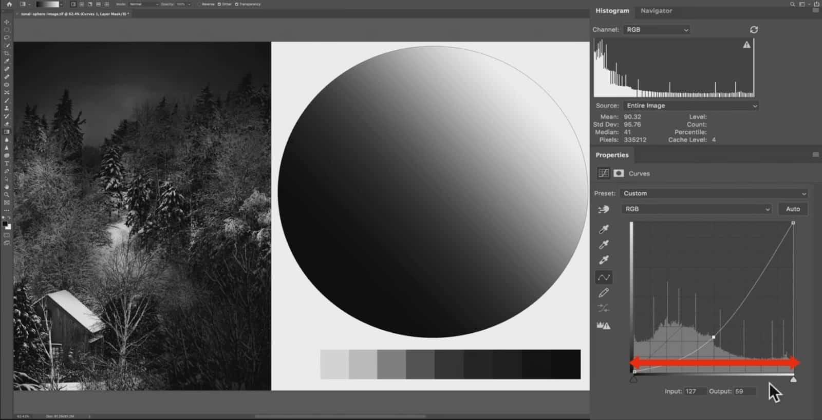 Dark Tones in Curve - CreativeRAW