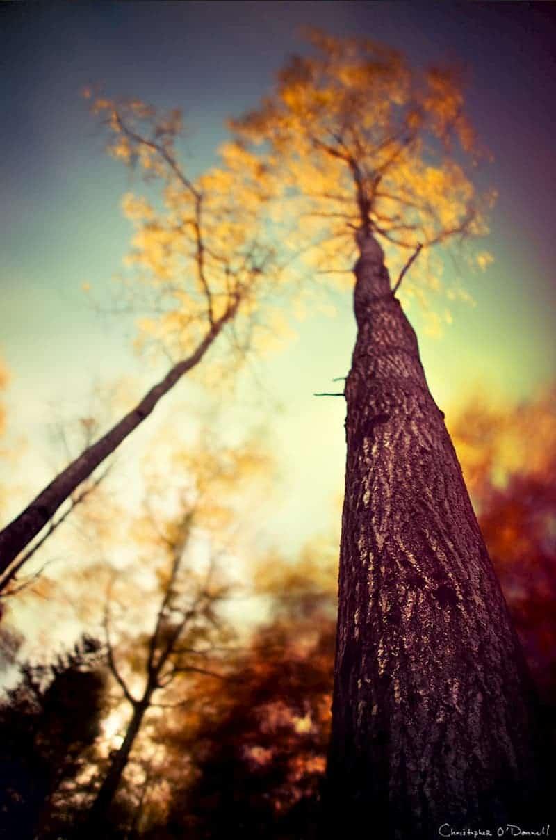 long-exposure-daylight-nd-filter