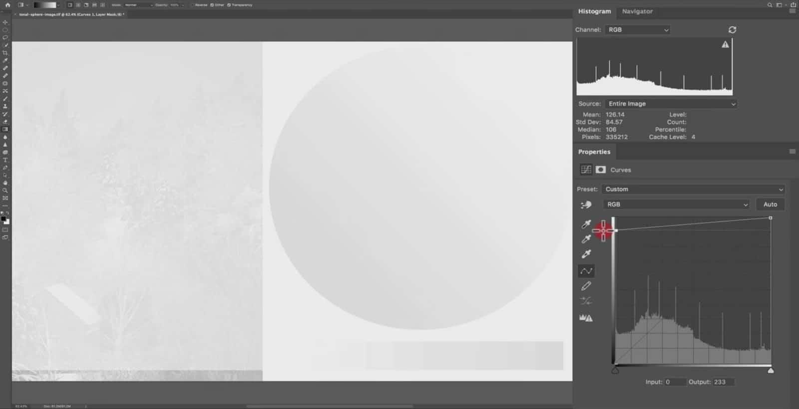 Pure White in Curve - CreativeRAW
