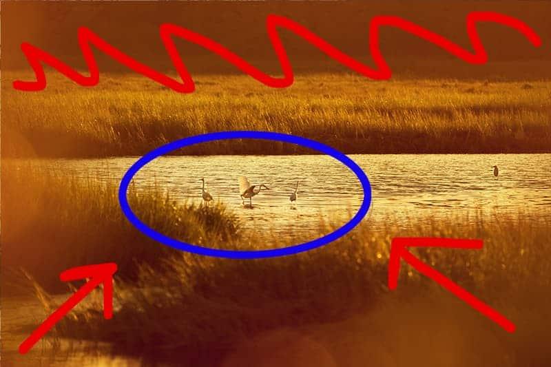 Minimize Distractions Photoshop - CreativeRAW