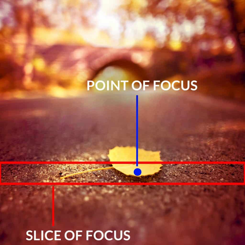 The aperture to manipulate the depth of field - CreativeRAW