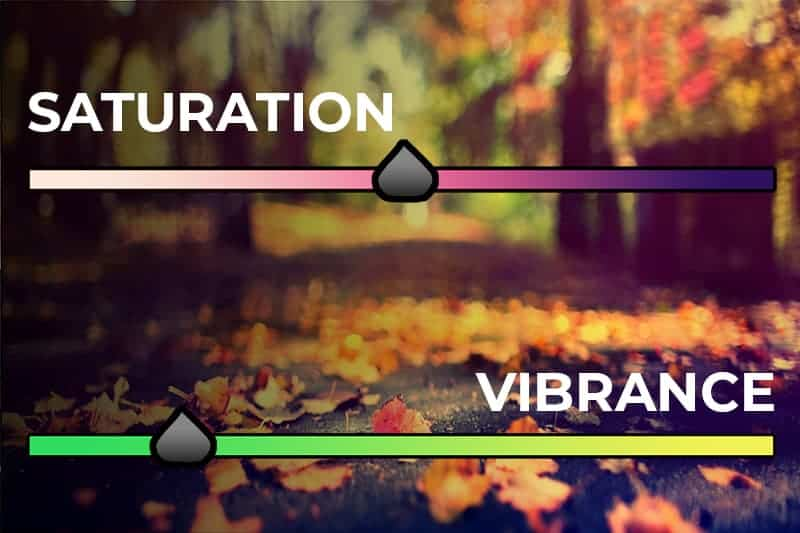 Saturation and Vibrance Sliders - CreativeRAW